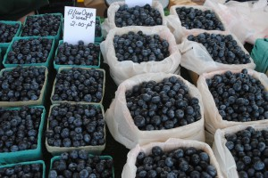 Blueberries at Holland Farmers Market