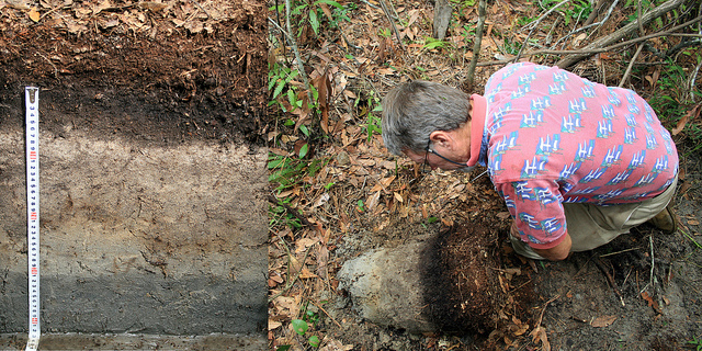 Soil scientist at work. Photo credit: NC State.