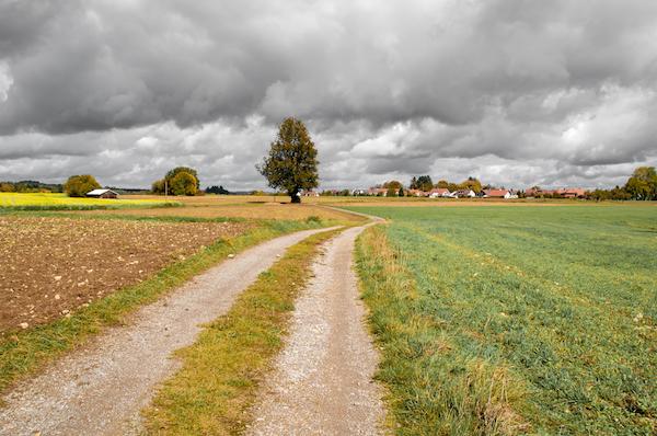 Socially innovative programs at risk if farm bill does not pass